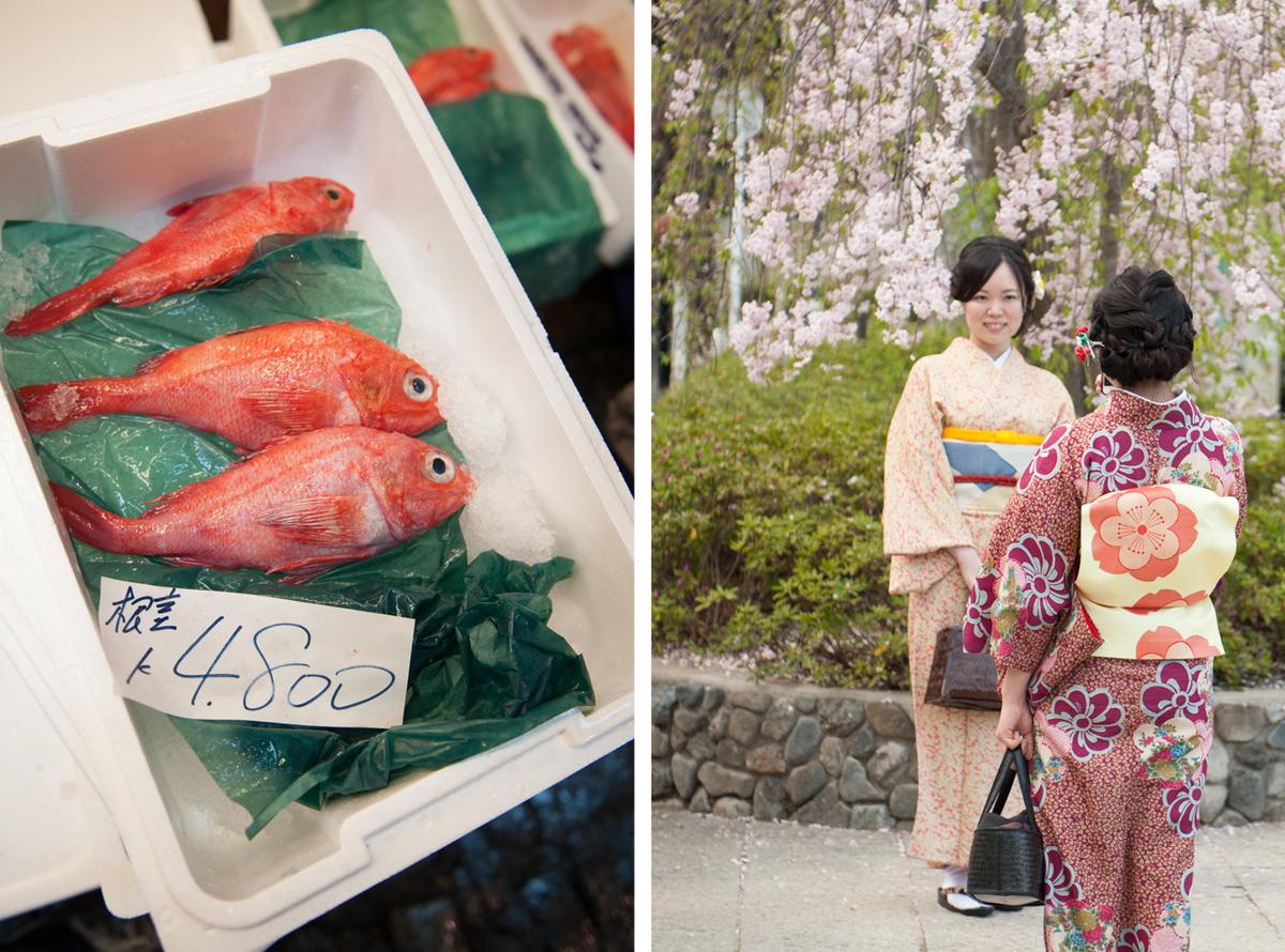 kimono fish market