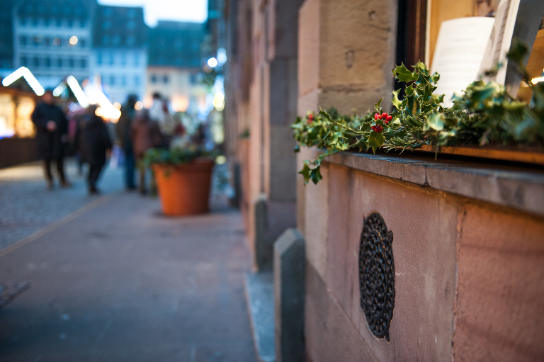 Strasbourg Christmas Vine and the Olive